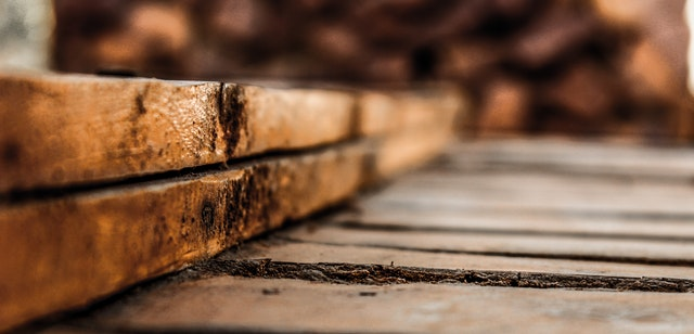 termite damage can happen in wood or your foundation
