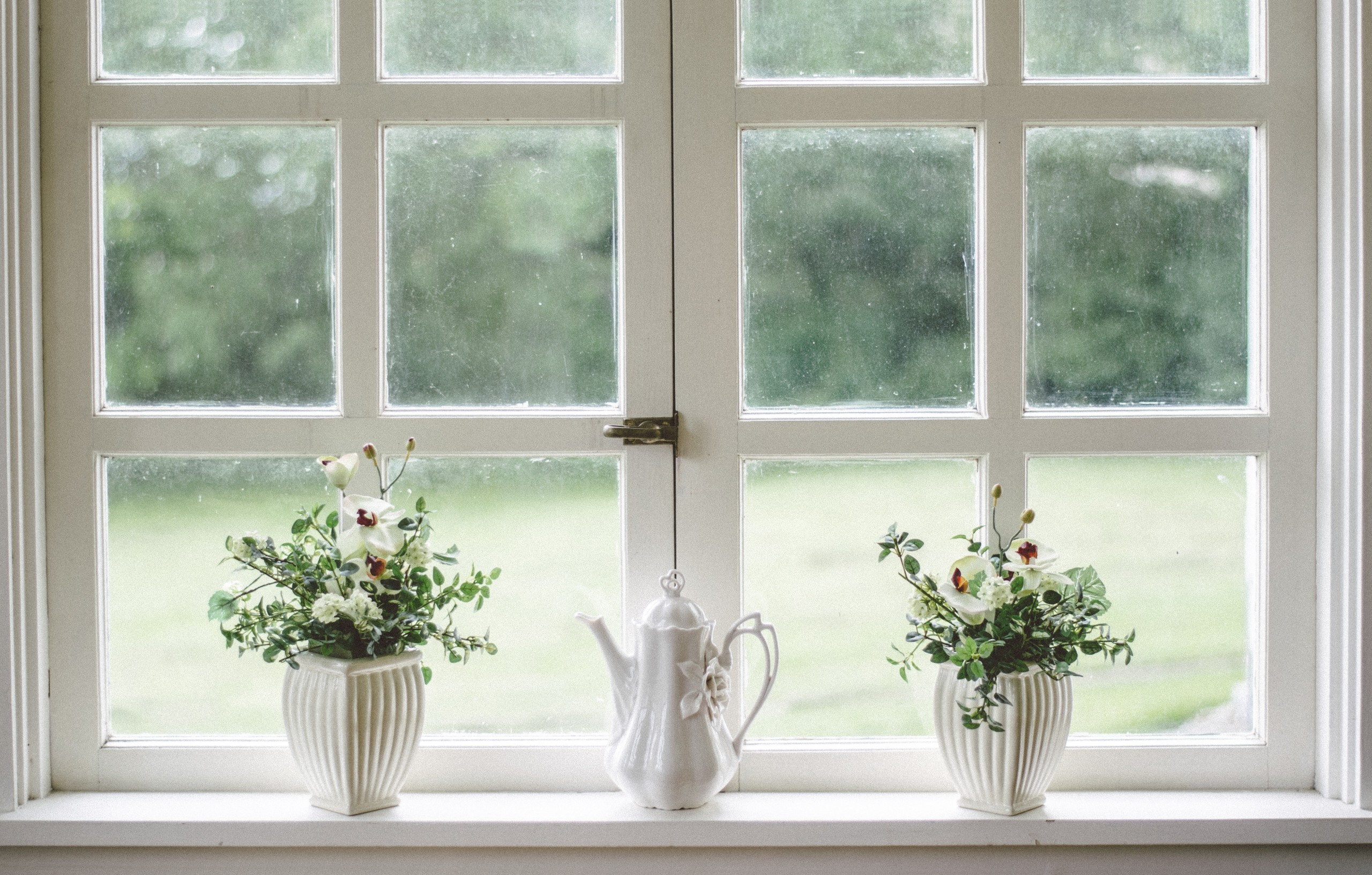 kitchen windows with plants